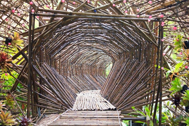 Túnel de bambú en el jardín. imagen de archivo