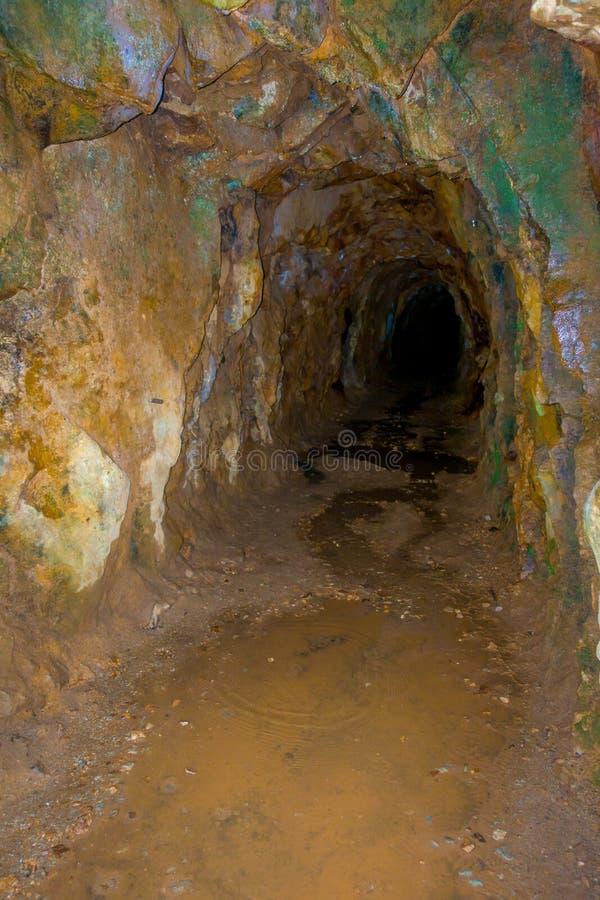Túnel de trilho histórico, uma parte de um sistema de transporte de mina de ouro velho situado na ilha norte em Nova Zelândia foto de stock