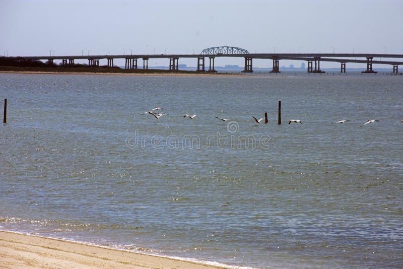 Túnel -05 del puente de la bahía de Chesapeake fotografía de archivo