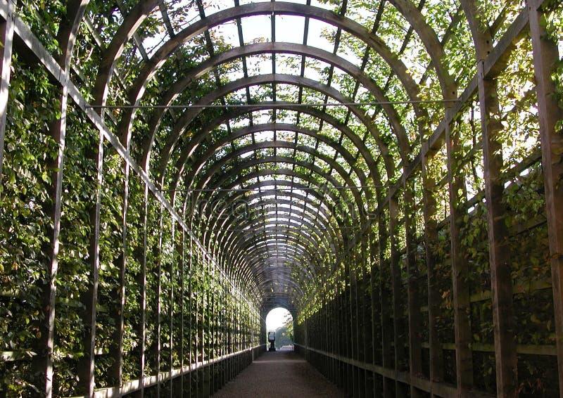 Túnel do jardim imagem de stock