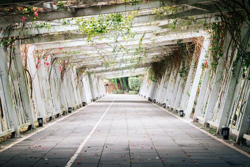 Túnel floral no parque da expo de Taipei em Taiwan imagens de stock