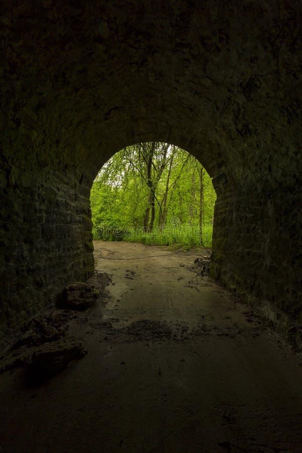 Túnel interno às madeiras fotografia de stock
