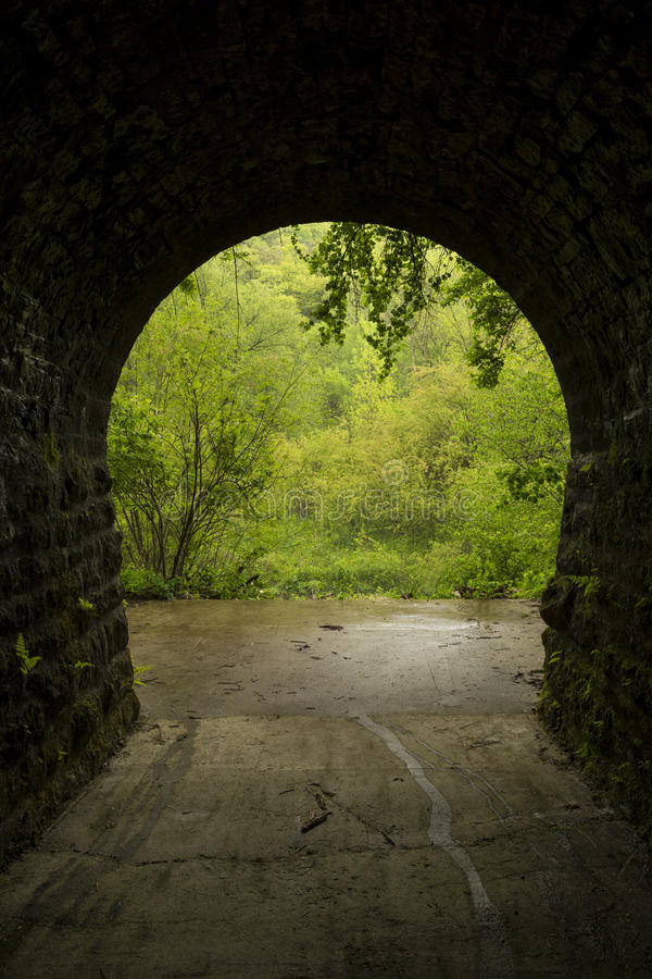 Túnel interno às madeiras fotografia de stock royalty free
