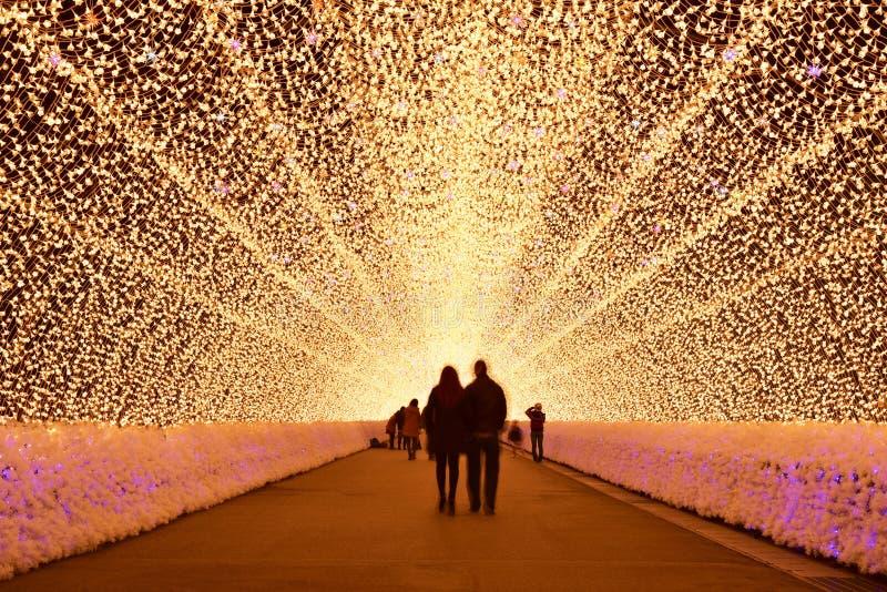 Túnel ligero en la iluminación del invierno, Mie, Japón fotografía de archivo