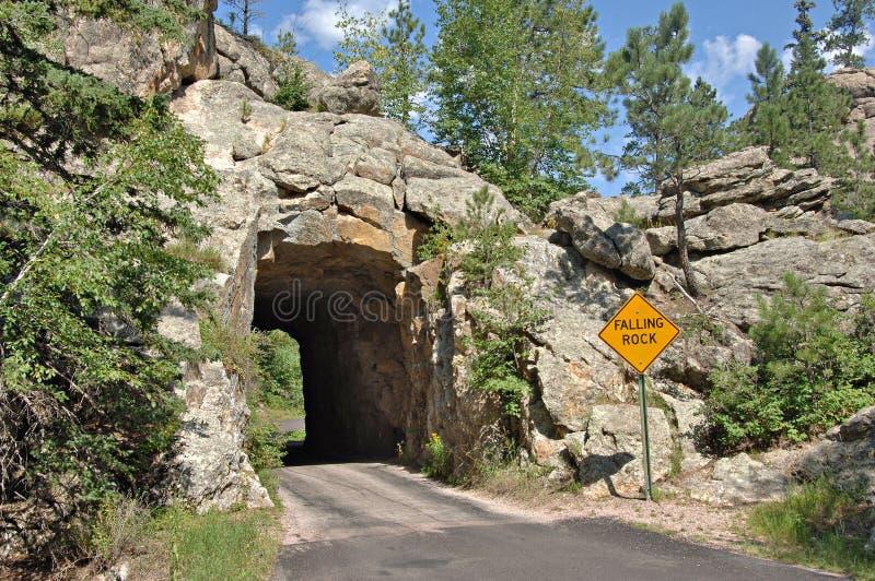 Túnel no Black Hills fotos de stock