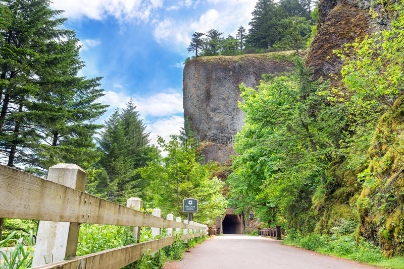 Túnel por la garganta de Oneonta fotos de archivo