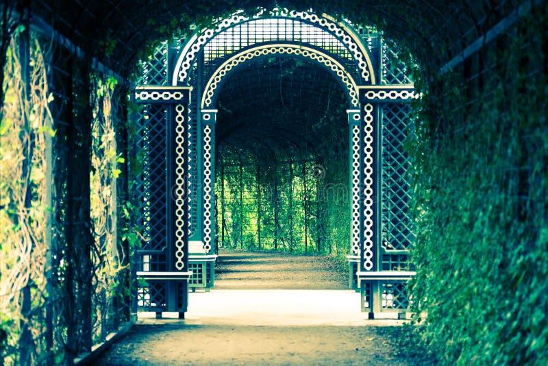 Túnel real del jardín fotos de archivo