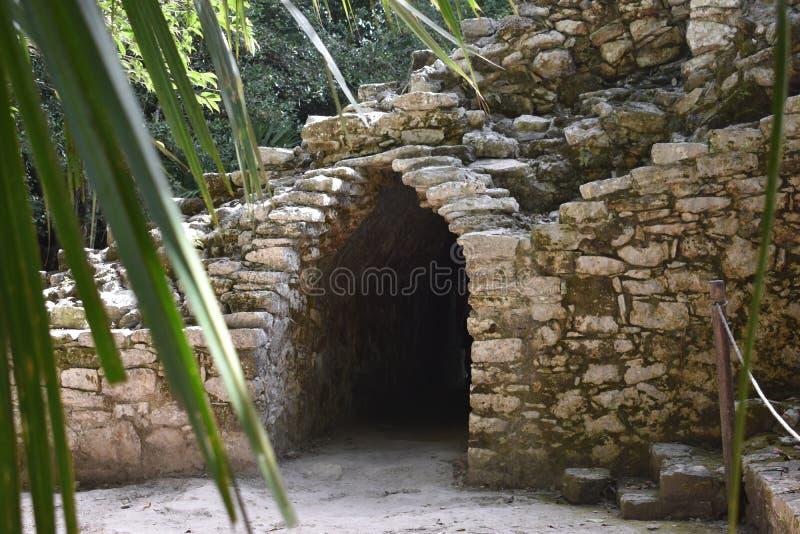 Túnel usado por los sacerdotes, ruinas mayas antiguas, Coba México fotografía de archivo libre de regalías