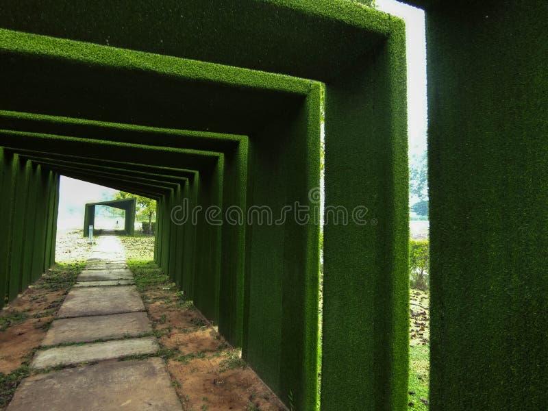Túnel verde e a extremidade do destino fotos de stock