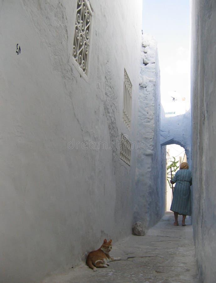 Túnez Hammamet fotografía de archivo libre de regalías