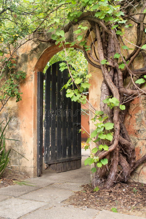Tür in der alten rustikalen Wand stockbild
