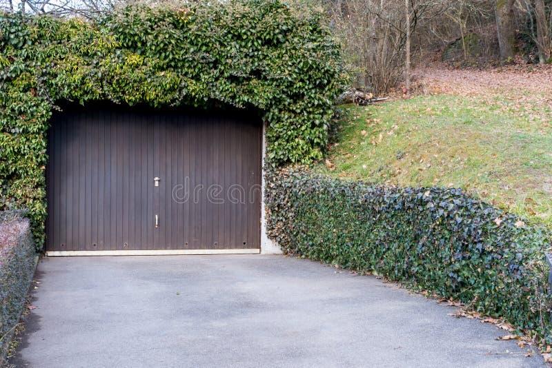 Tür der Garage sourrounded mit Efeu stockbilder