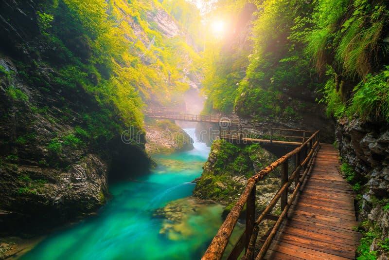 Türkis Radovna-Fluss in Vintgar-Schlucht und im hölzernen Steg, Slowenien lizenzfreie stockbilder