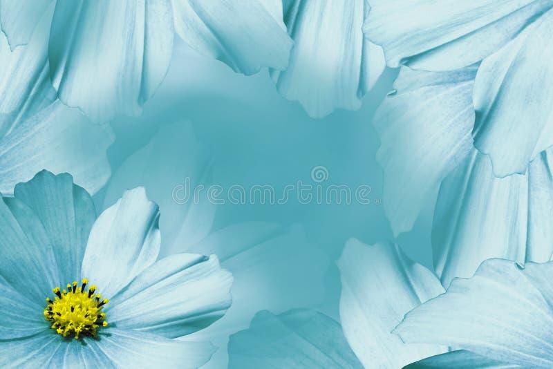 Türkis-weißer Schöner Mit Blumenhintergrund Tulpen Und Winde Auf ...