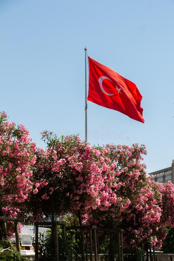 Türkische Flagge unter Bäumen mit rosa Blumen, blauer Himmel auf Hintergrund Sch?ne Szene lizenzfreies stockfoto