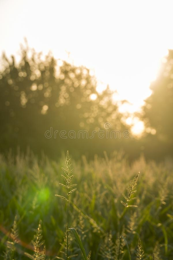 Türkisches tägliches Programm des Sonnenuntergang-A stockfotografie