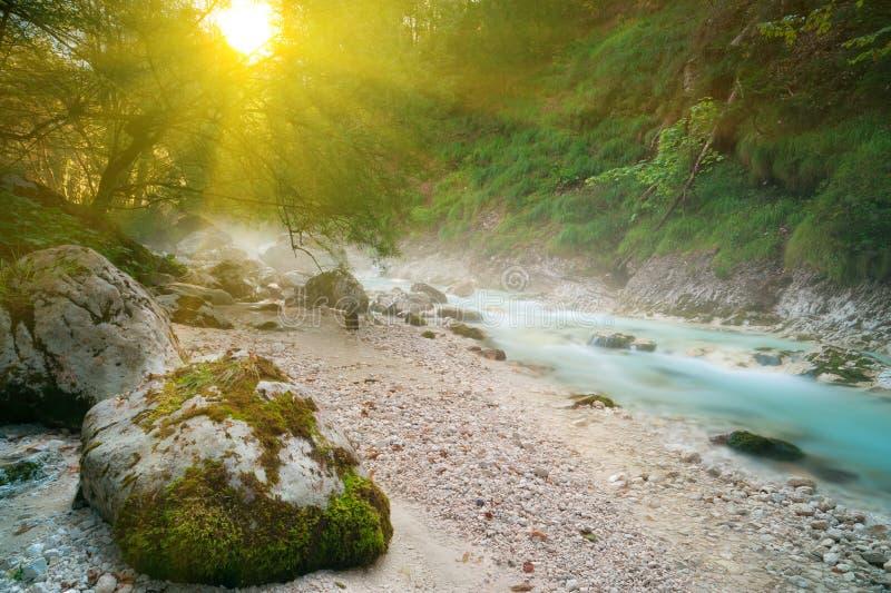 Türkisgebirgsbach in der Sonnenaufgangleuchte. stockfotos