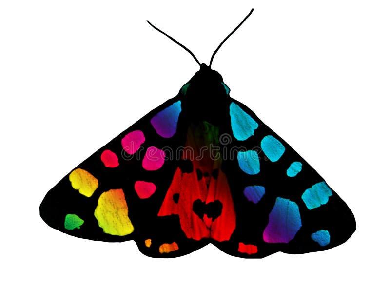 tęcza motyli ilustracyjny wektor obrazy royalty free