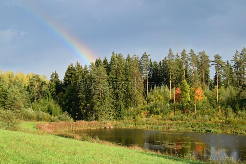 Tęcza nad lasem przy wsią zdjęcia royalty free