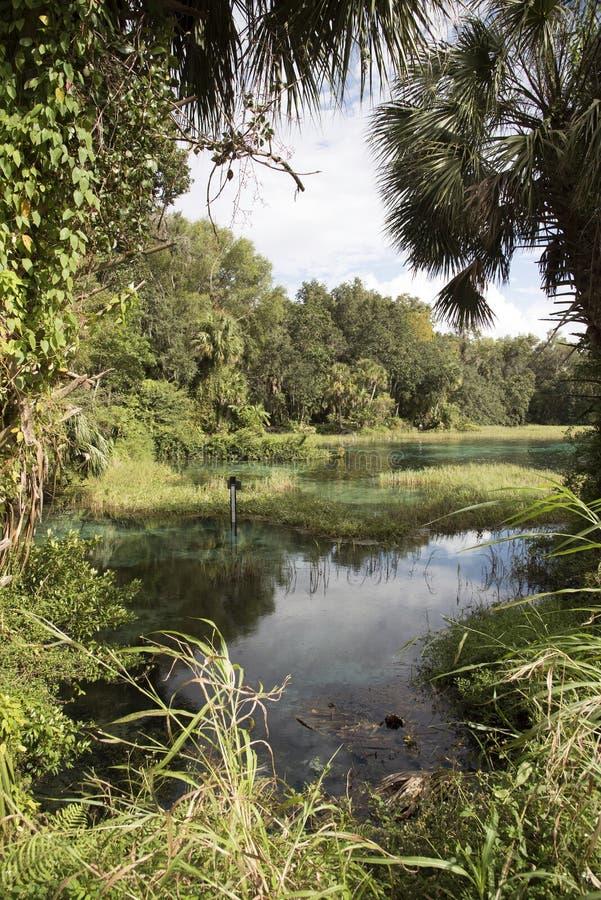 Tęcza Skacze stanu parka Floryda usa zdjęcie royalty free