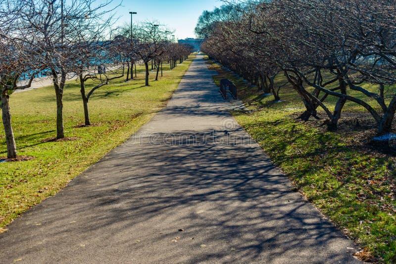 Tęsk ślad z Nagimi drzewami wzdłuż jezioro michigan w Chicago zdjęcia stock