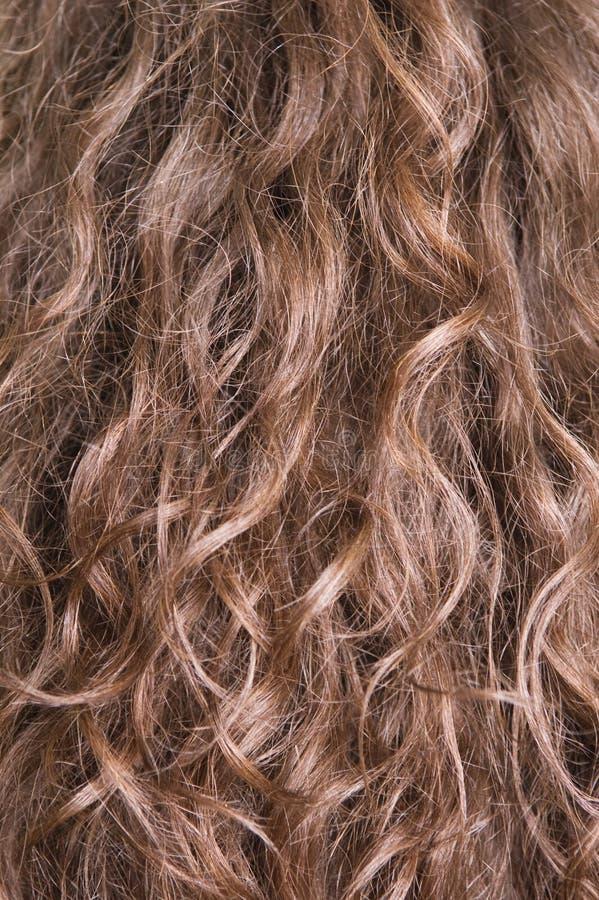 tęsk włosy tęsk zdjęcie stock