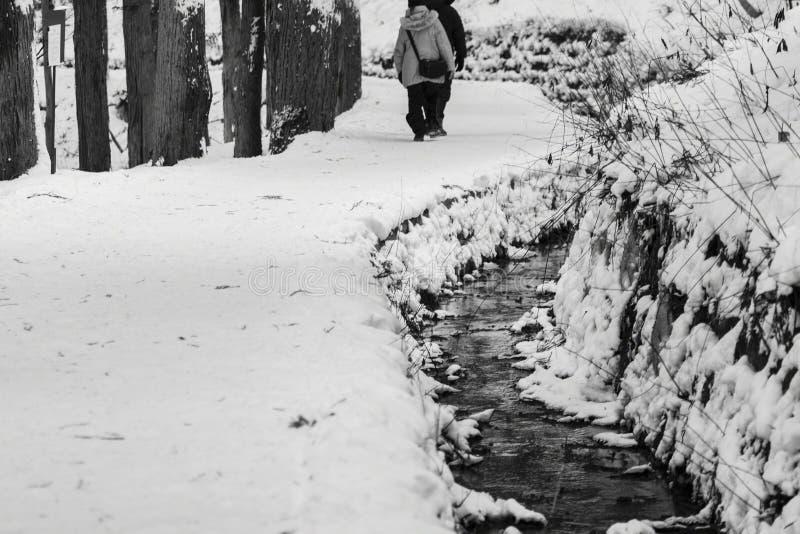 Tęsk wycieczkujący ścieżkę zakrywającą w śniegu z małym strumienia bieg puszkiem strona obrazy royalty free