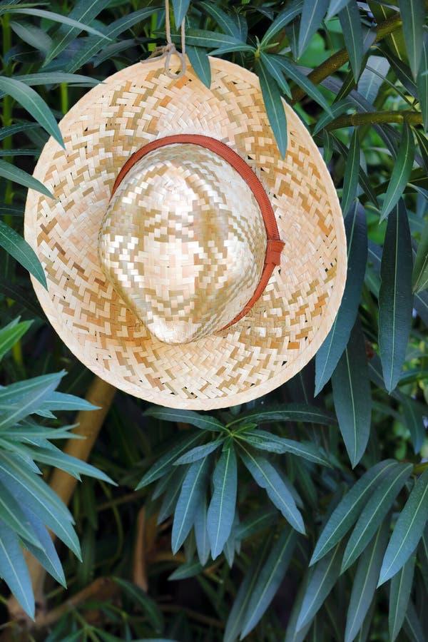tła ścinku kapeluszu odosobnionej ścieżki słomiany biel fotografia stock