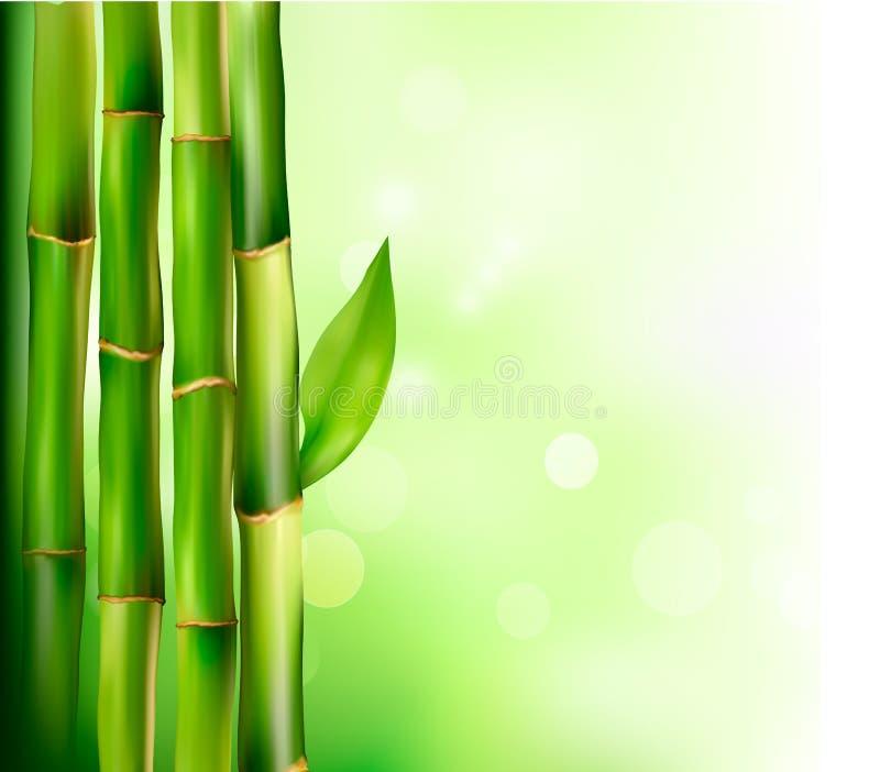 tła bambusa wektor ilustracji