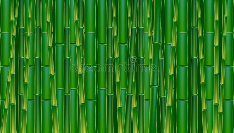 tła bambusa zieleni ilustraci wektor royalty ilustracja