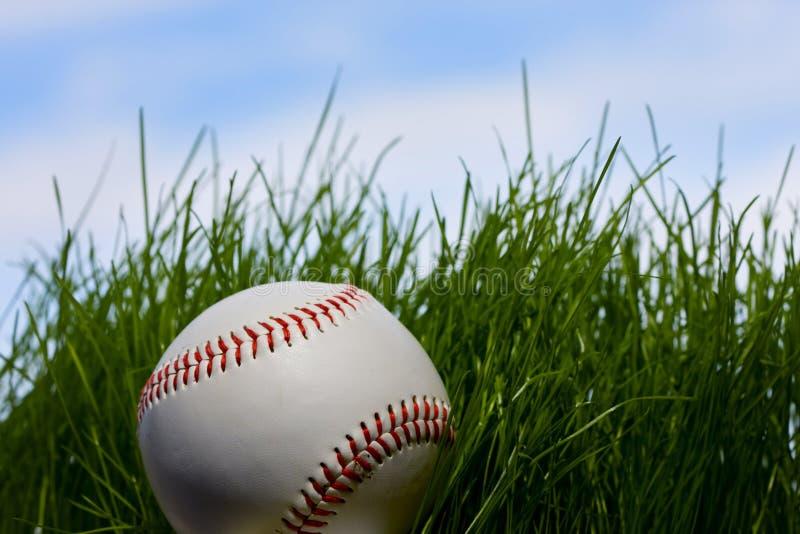 tła baseballa trawa nad potomstwami obrazy stock