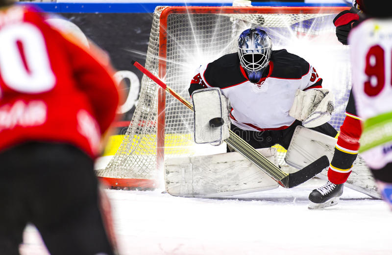 tła bramkarza hokeja lodu fotografii biel obrazy royalty free
