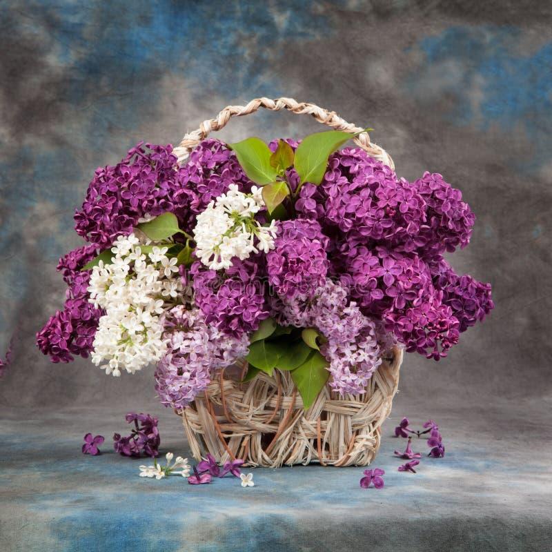 tła bukieta dekoracyjna ilustracyjna wiosna obrazy royalty free