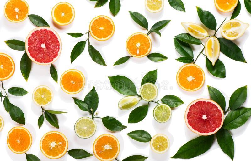tła cytrusa sprawności fizycznej owoc zdrowego odosobnionego kiwi życia pomarańczowi plasterki projektują biel zdjęcia royalty free