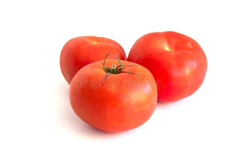 tła czerwieni trzy pomidory biały zdjęcia stock