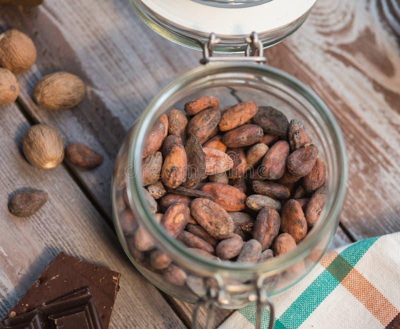 tła fasoli kakaowy ilustraci wektoru biel fotografia royalty free