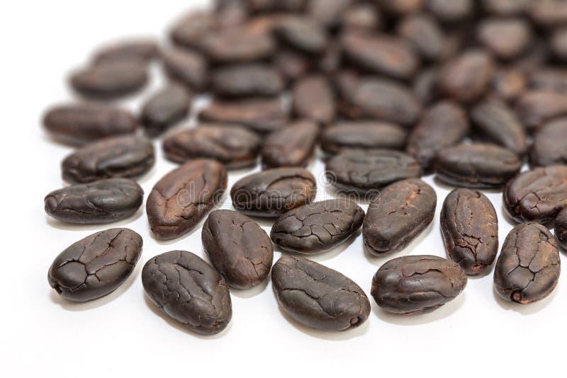 tła fasoli kakaowy ilustraci wektoru biel zdjęcia stock