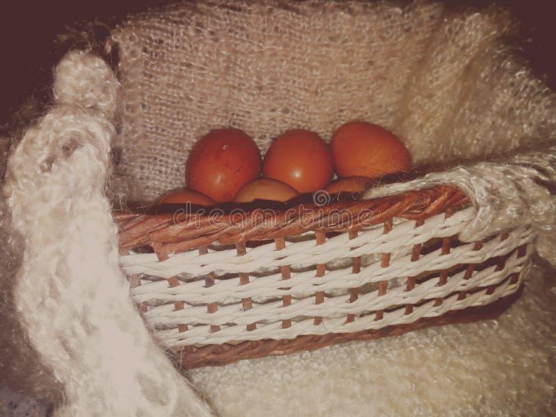 tła koszykowi kurczaka jajka ocieniają miękkiego biały wicker obraz stock