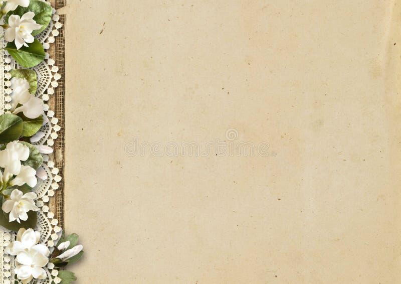 tła kwiatów koronkowy rocznik Czuły okwitnięcie zdjęcia stock
