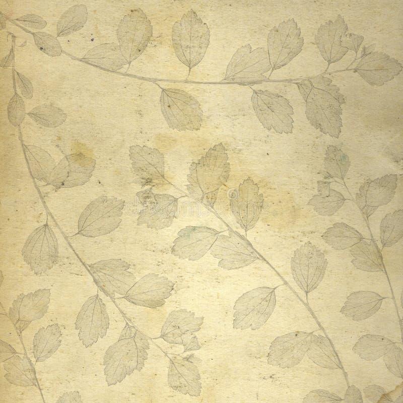 tła lea papier scethed royalty ilustracja