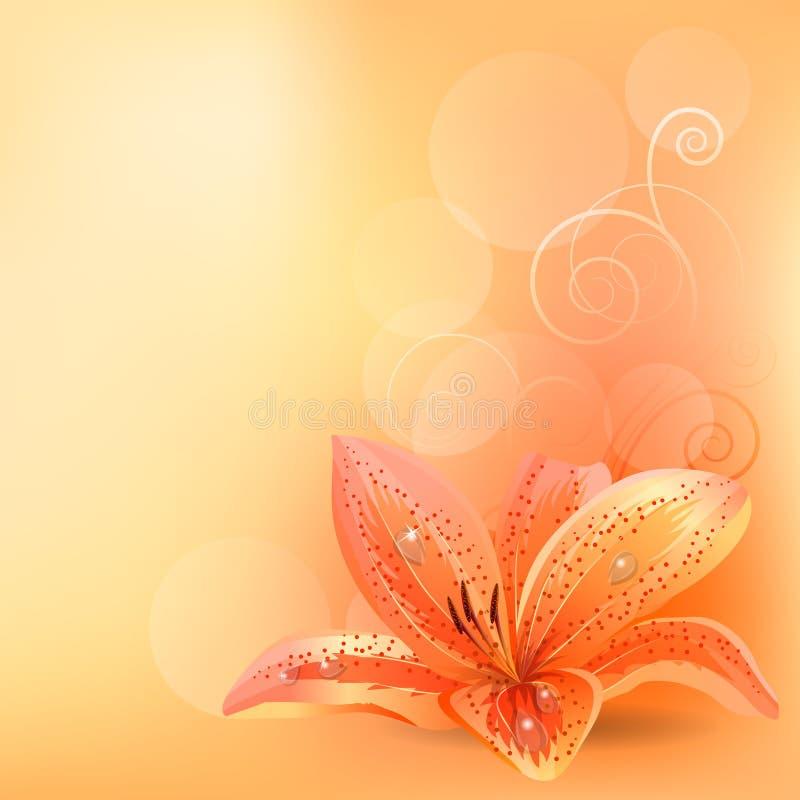 tła lelui pomarańcze pastel ilustracja wektor