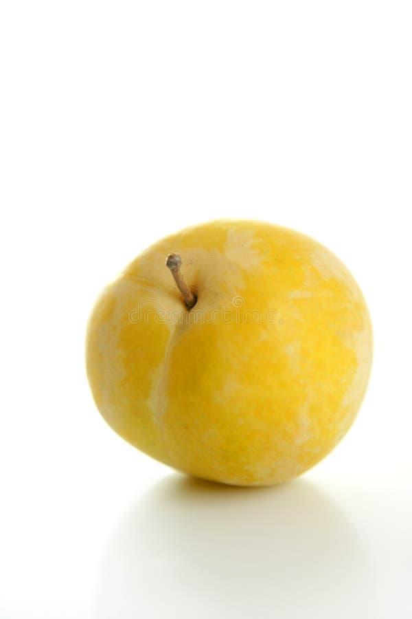 tła mirabelki biel kolor żółty obrazy stock