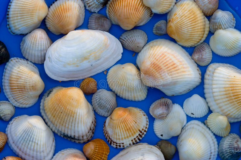 tła morze fotografia royalty free