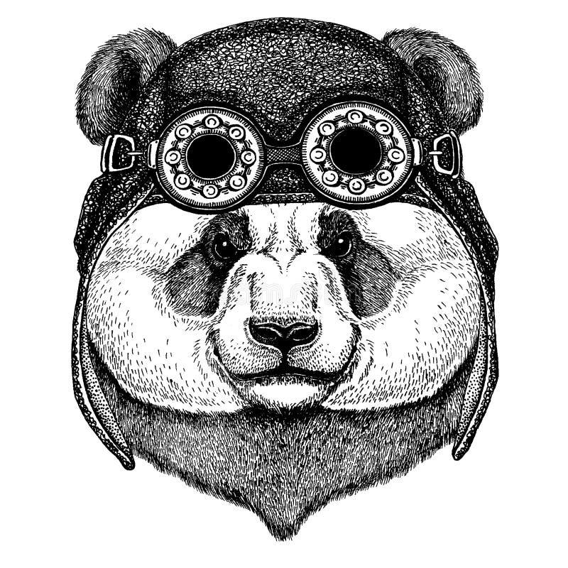 tła niedźwiadkowej kreskówki ilustracyjny pandy stylu biel Bambusa niedźwiedź Śliczny zwierzęcy jest ubranym motocykl, lotnika he ilustracja wektor