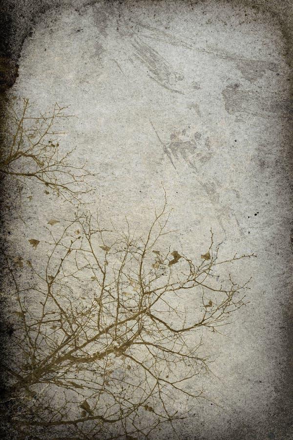tła odcisku drzewa rocznik obrazy stock