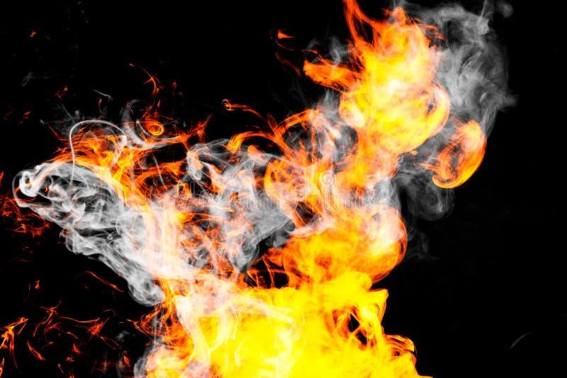 tła pożarniczych płomieni wysoki wizerunku postanowienie zdjęcie royalty free