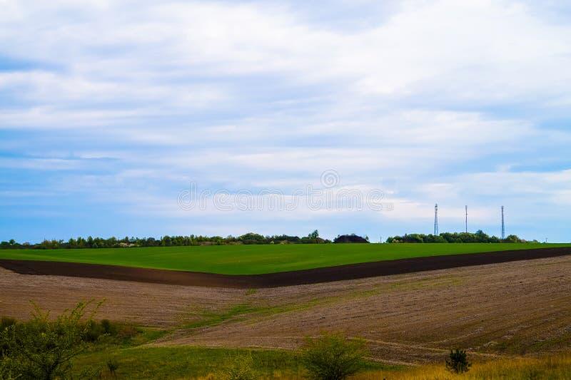 tła pola trawy krajobrazu niebo zdjęcia royalty free