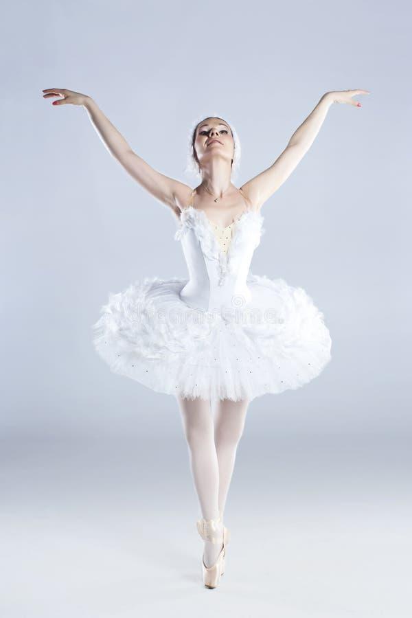 tła tancerza nowożytny target315_0_ studia styl obraz royalty free