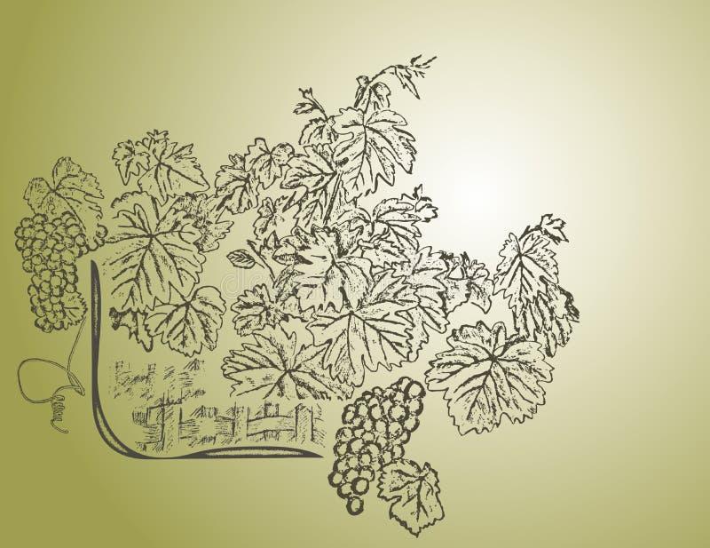 tła wino ilustracji