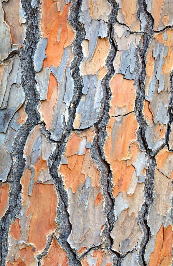 Tła wizerunku od drzewna barkentyna obraz stock